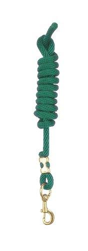 Perris Nylon Lead with Snap - Color: Hunter Green Size: One