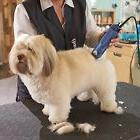 Pet Grooming Clipper Dog Cat Horse Animal Professional 2-