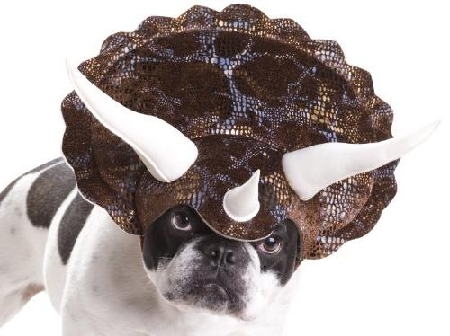 PET20104 Triceratops Dog Costume, X-Small