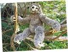 "Plush Toy Sloth - 11"" Soft and Cuddly Stuffed Animal Sloth"