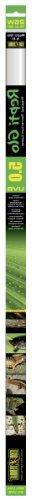 Exo Terra Repti Glo 5.0 Tropical Terrarium Lamp, 25-Watt, 30