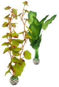 biOrb Silk Plant Pack, Medium, Green/Green