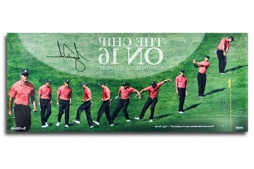 """Tiger Woods Autographed """"The Chip on 16"""" 36x15 Panoramic"""