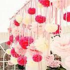 Tissue Paper Pom Poms 30 Pcs Flower Ball Wedding Party