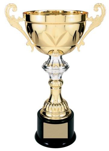 Trophy Paradise Series 204 Metal Cup Trophy - Gold/Silver -