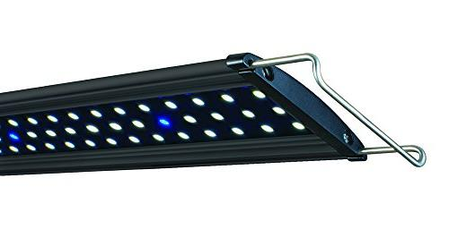Lifegard Aquatics Ultra Slim Freshwater LED Light, 60