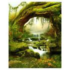 5X7FT Vinyl Backdrop Photography Prop Fairy Tale Scenic