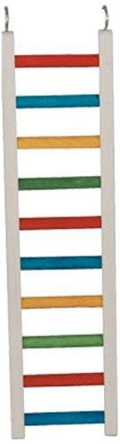 Paradise Toys 24-Inch Wood Parrot Ladder